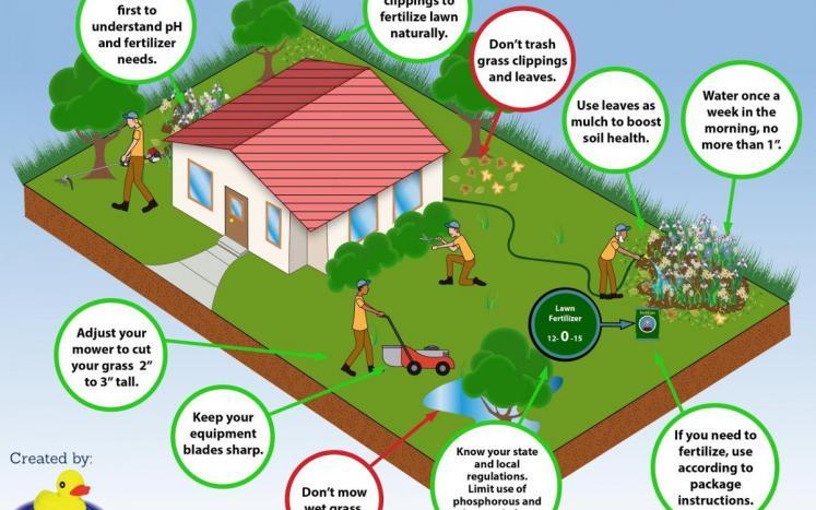 Greenscapes lawn care guide